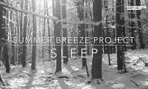 SBP – Sleep (stopping by woods on a snowy evening)